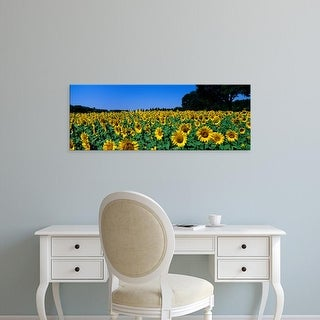 Easy Art Prints Panoramic Images's 'Sunflowers In A Field, Provence, France' Premium Canvas Art