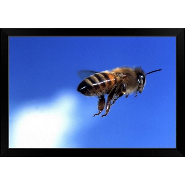 """""""flying bee"""" Black Framed Print"""