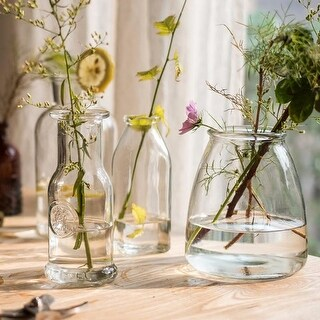 G Home Collection Rustic Small Glass Vase in Various Shapes Randomly Picked Set of 5
