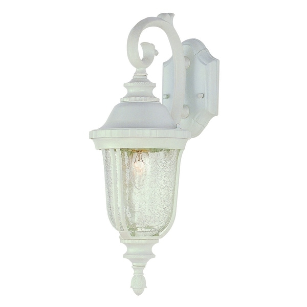 Trans Globe Lighting 4020 1 Light Down Outdoor Wall Sconce From The Collection