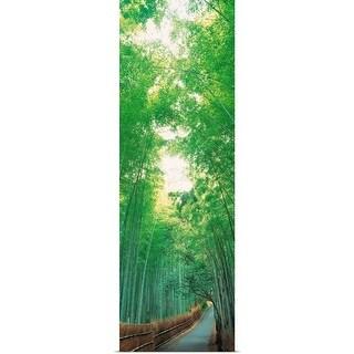 """""""Sagano Kyoto Japan"""" Poster Print"""