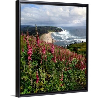 """Foxgloves at Cascade Head, The Nature Conservancy, Tillamook County, Oregon"" Black Float Frame Canvas Art"