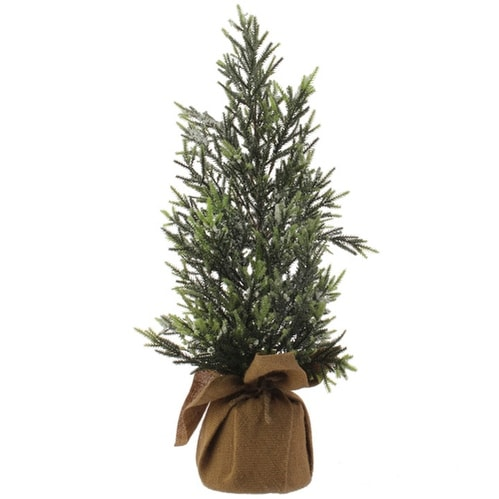 Pine Tree in Burlap Sack