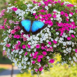 Butterfly Wildflower Garden with Vertical Growing Bag