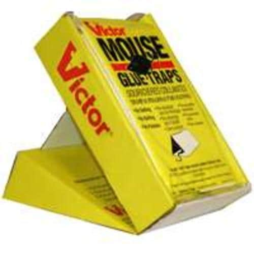 Victor M180C Mouse Glue Trap, 2 Pack