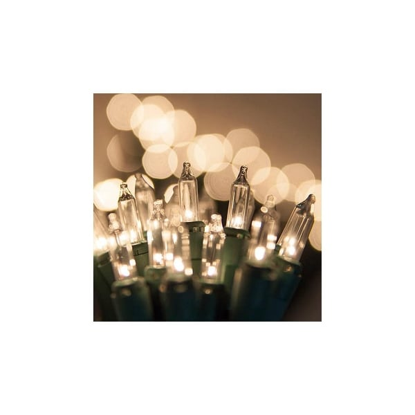 """Wintergreen Lighting 15260 50.5' Long Outdoor Standard 100 Twinkle Mini Light Holiday Light Strand with 6"""" Spacing and Green"""