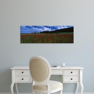 Easy Art Prints Panoramic Image 'Flowers On A Field, Staxton, North Yorkshire, England, United Kingdom' Canvas Art