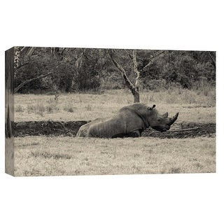 """PTM Images 9-102266  PTM Canvas Collection 8"""" x 10"""" - """"Black Rhino"""" Giclee Rhinoceroses Art Print on Canvas"""