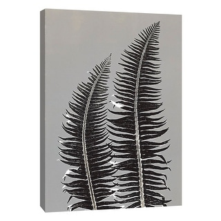 """PTM Images 9-105225  PTM Canvas Collection 10"""" x 8"""" - """"Gray Ferns"""" Giclee Ferns Art Print on Canvas"""