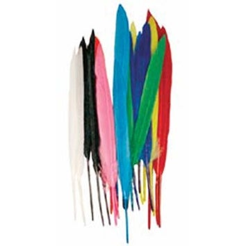 Assorted Colors - Mini Indian Feathers 24/Pkg