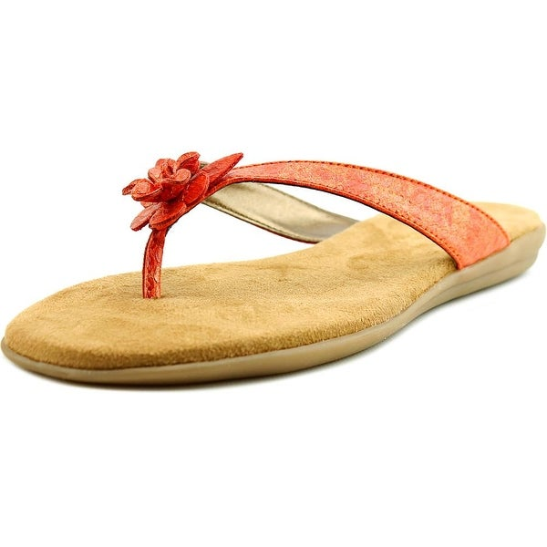 Aerosoles Branchlet Women Open Toe Synthetic Orange Flip Flop Sandal