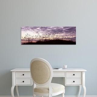 Easy Art Prints Panoramic Image 'Sea oat grass, beach, Atlantic Ocean Beach, Amelia Island, Nassau, Florida' Canvas Art