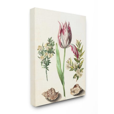 Stupell Industries Exotic Tropical Pink Floral Illustration with Nautical Shells Canvas Wall Art - Multi-Color