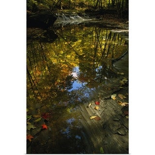 """Autumn color trees reflected in stream, Ohio"" Poster Print"