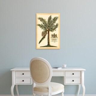 Easy Art Prints Vision Studio's 'British Colonial Palm II' Premium Canvas Art