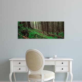 Easy Art Prints Panoramic Images's 'Trees in a forest, Porlock, Isle of Skye, Scotland' Premium Canvas Art