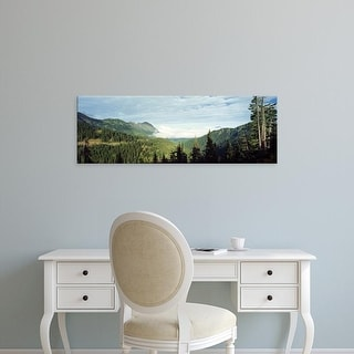 Easy Art Prints Panoramic Image 'Trees in a forest, Hurricane Ridge, Olympic National Park, Washington' Canvas Art