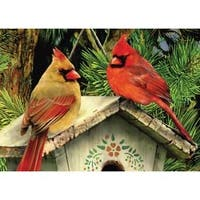 """Cardinals - Mini Paint By Number Kit 5""""X7"""""""