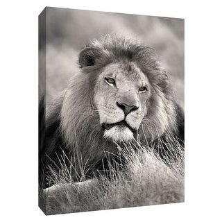 "PTM Images 9-148546  PTM Canvas Collection 10"" x 8"" - ""Pride of the Pride"" Giclee Safari Animals Art Print on Canvas"