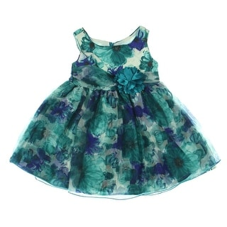 Sweet Heart Rose Toddler Organza Special Occasion Dress - 3T