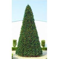 18' Giant Pre-Lit Everest Fir Commercial Christmas Tree - Multi LED Lights