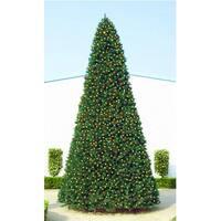 20' Giant Pre-Lit Everest Fir Commercial Christmas Tree - Multi LED Lights - green