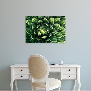 Easy Art Prints Rob Tilley's 'Queen Victoria's Agave' Premium Canvas Art