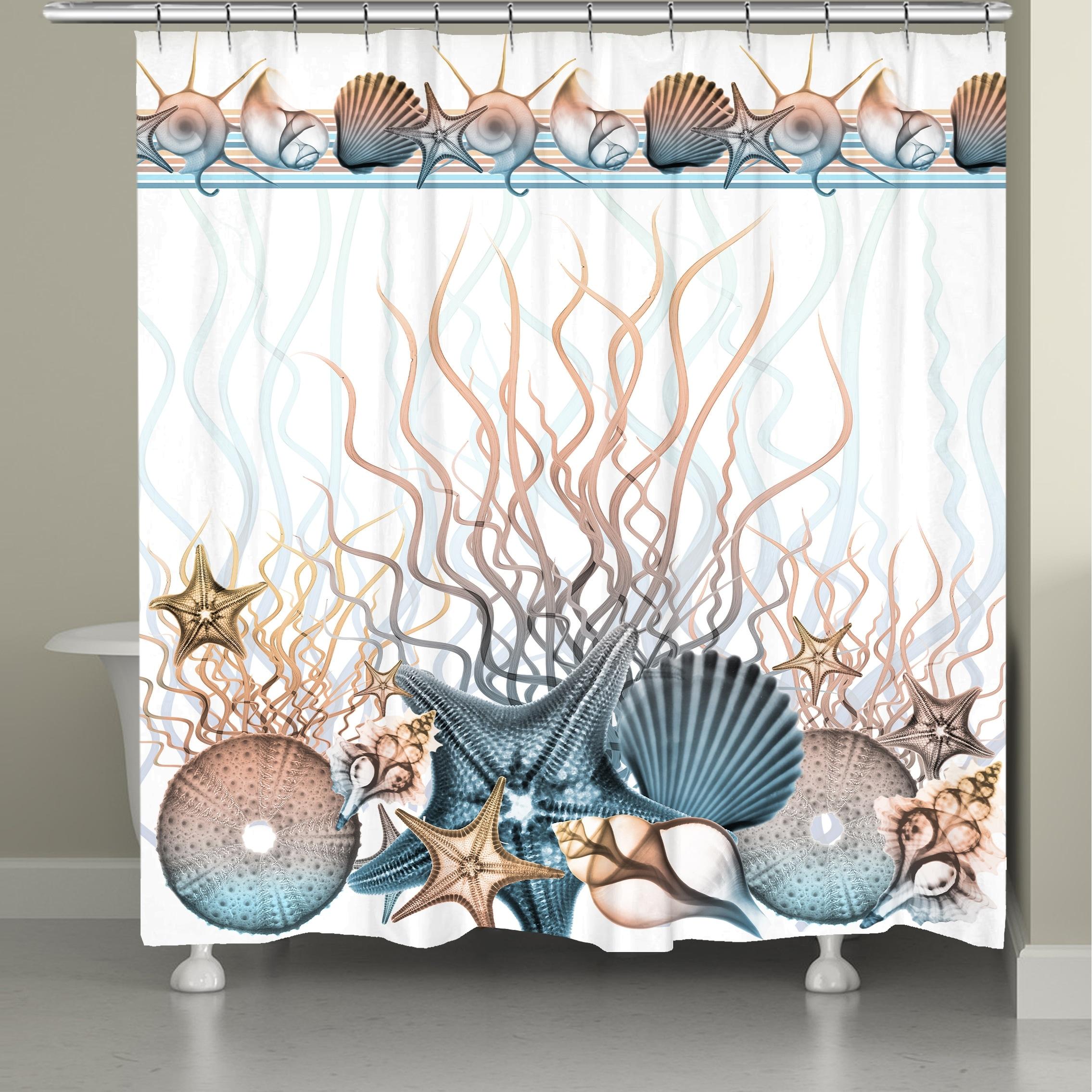 Sunset Seashells Shower Curtain