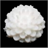 Lucite Flower Cabochons Dahlia Chrysanthemum Mum White 10mm (6)