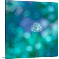 Premium Thick-Wrap Canvas entitled Dandelion with blue and green background.