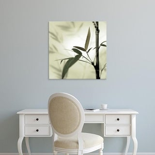 Easy Art Prints Alan Blaustein's 'Bamboo #1' Premium Canvas Art
