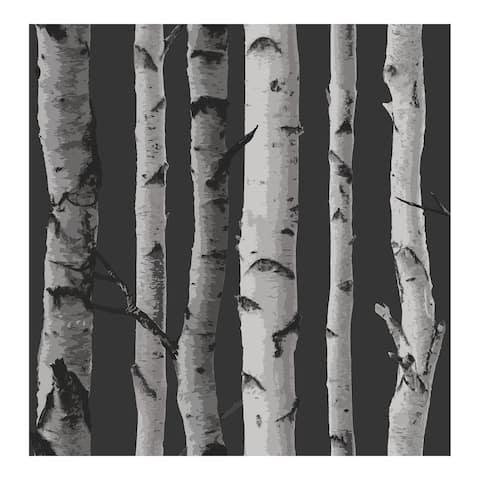 Distinctive Black Birch Tree Wallpaper - 20.5 x 396 x 0.025