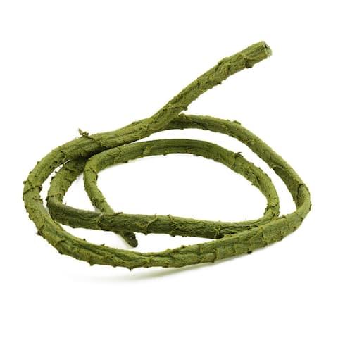 Green Bendable Jungle Vine Rattan Decor for Small Reptiles Amphibians Lizard - Green,Large Size