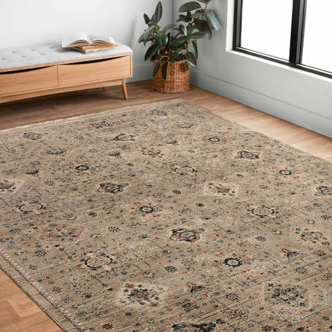 Alexander Home Reese Persian Transitional Area Rug