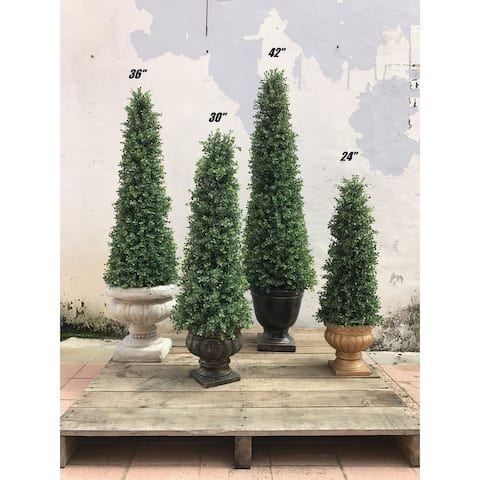 Decorative Boxwood Topiary