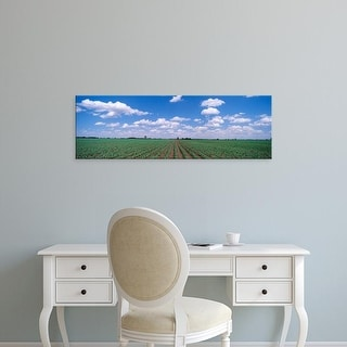Easy Art Prints Panoramic Images's 'Cornfield, Marion County, Illinois, USA' Premium Canvas Art