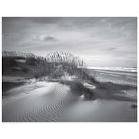 ''Sand Dunes'' by Anon Coastal Art Print (14.5 x 18.5 in.)