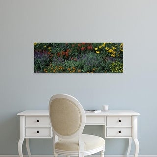 Easy Art Prints Panoramic Images's 'Flowers in bloom, Marion County, Illinois, USA' Premium Canvas Art