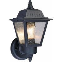 """Volume Lighting V8520 1-Light 10.5"""" Height Outdoor Wall Sconce with Clear Seedy Glass - n/a"""