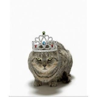 """Cat wearing a tiara"" Poster Print"