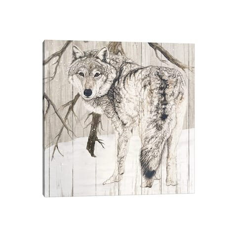 """iCanvas """"Wolf In Woods"""" by Jacquie Vaux Canvas Print"""