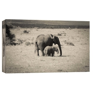 """PTM Images 9-102272  PTM Canvas Collection 8"""" x 10"""" - """"Big & Small"""" Giclee Elephants Art Print on Canvas"""
