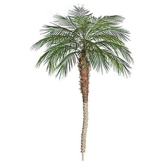 Autograph Foliages P-91708 8 ft. Phoenix Palm Tree Green