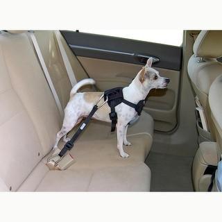 Bergan Dog Travel Harness Small Blue
