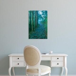 Easy Art Prints Rob Tilley's 'Kumano Road' Premium Canvas Art