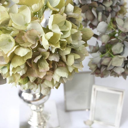 """G Home Collection Luxury Silk Single Hydrangea Stem in Green 19"""" Tall"""