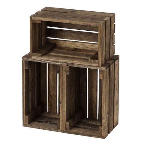 Begonia Three-Piece Crate Bundle