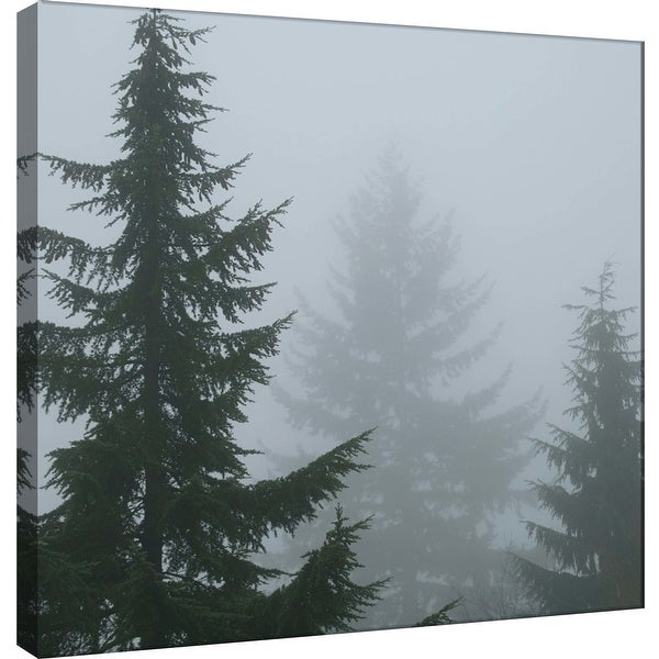 """PTM Images 9-101241 PTM Canvas Collection 12"""" x 12"""" - """"Foggy Morning 1"""" Giclee Forests Art Print on Canvas"""