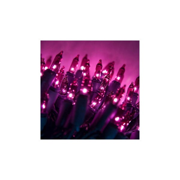 "Wintergreen Lighting 15208 50.5' Long Indoor Standard 100 Mini Light Holiday Light Strand with 6"" Spacing and Green Wire"