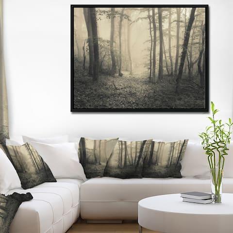 Designart 'Vintage Style Spring Forest' Landscape Photography Framed Canvas Print